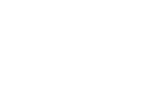 The Wedge Fairing Logo